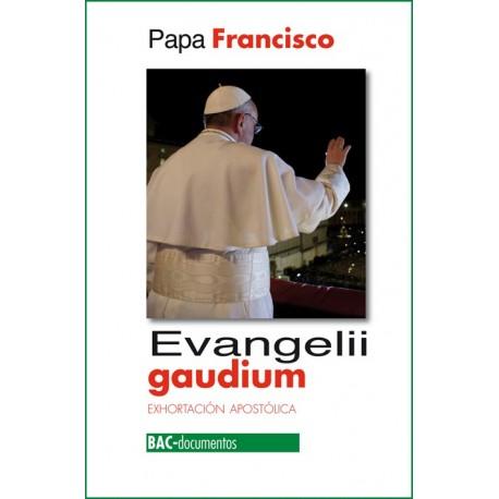 Evangelii gaudium. Exhortación apostólica