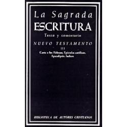 La Sagrada Escritura. Nuevo Testamento. III: Carta a los Hebreos. Epístolas católicas. Apocalipsis. Índices